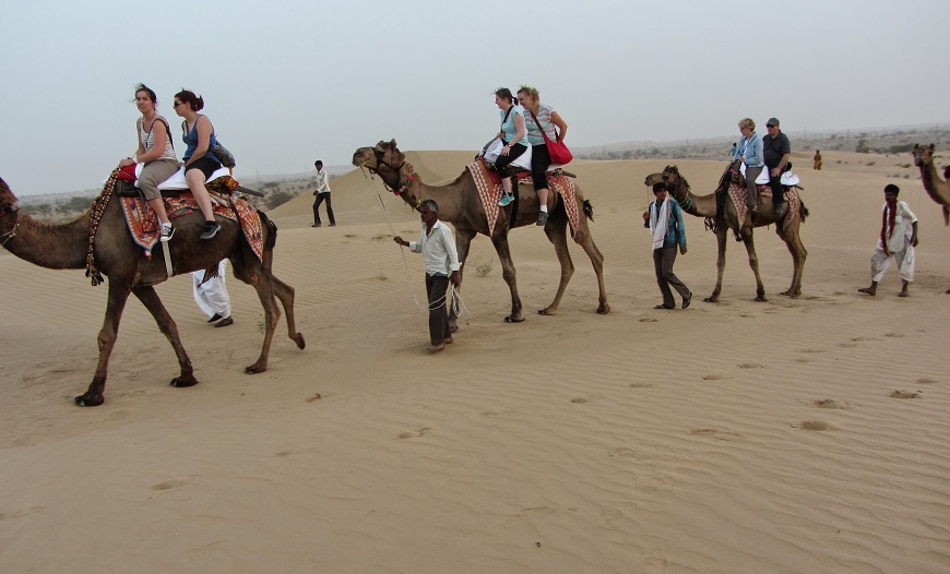 Manwar Camel Safari/Jeep Safari in the Thar Desert